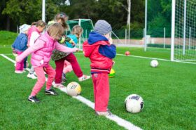 Implementing Physical Activity and Nutrition Programs in School Settings
